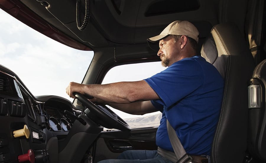 Truck Driver Behind Wheel